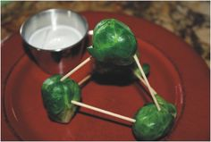Molecular Model Brussels Sprouts by www.shesaved.com #veggieworld