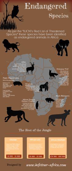 Endangered Species - Africa