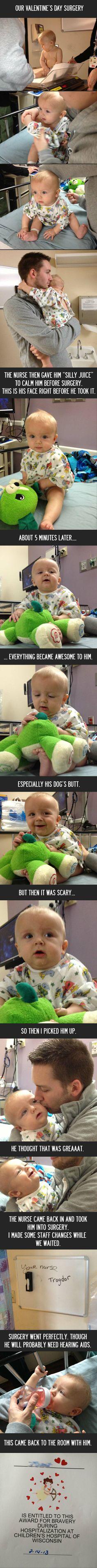 Brave little guy. - Imgur