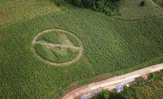 Monsanto's Harvest of Fear