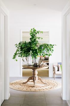 plant, interior, entry tables, rug, foyer, hallway, round tables, entrance, entryway