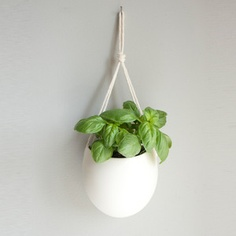 Rope Planter Medium now featured on Fab.