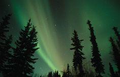 Northern Lights...ahhhhhhh