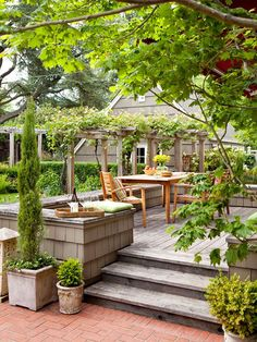 Green Thumb  Green plantings serve as the artwork in this simple outdoor space. Potted shrubs dot the perimeter, while vines climb over the pergola in the background—adding extra shade.