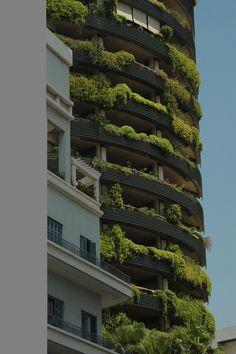 green thing, vertic garden, architectur, morning coffee, gardens, giardini verticali, garden dese, mornings, vertic green