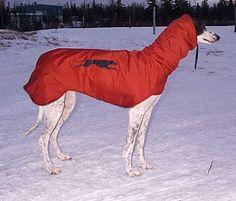 DOG PATTERN SEWING SWEATER | Free Patterns