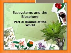 Topic:  Ecosystems and the Biosphere Part 2: Biomes of the World.   81-slide PowerPoint with Notes for Teacher and Student. $