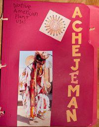 Native American Plant Uses lapbook - free from homeschool bin