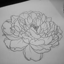 peony tattoo black and grey