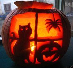 Pumpkin pumpkin pumpkin pumpkin