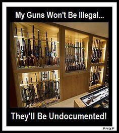 gun cabinet gun control second amendment obamacare Obama is a Socialist