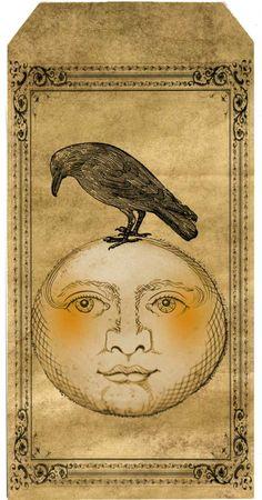 Moon:  #Crow and #Full #Moon.