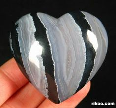 Black Zebra Jasper Heart