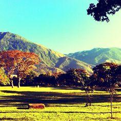 Caracas Cabré