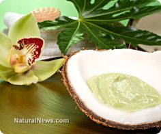 Why coconut oil is the best vegetable oil