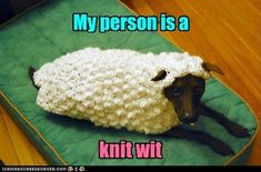 my person is a knit wit