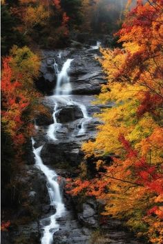 A Waterfall Surrounded by Trees in Vibrant Fall Colors - from National Geographic