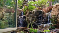 Pondless® Waterfall as seen from the basement office window. It replaced an existing window well.