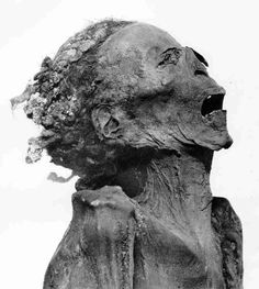 """The anonymous """"screaming"""" mummy, found in a sarcophagus devoid of all the symbolic """"protections"""" used by the Egyptians to allow the passage of the deceased in the underworld. The face contorted in a grimace of agony and the contract abdomen suggest the action of a poison. Some believe it is the mummy of prince Pentewere, the son of Ramses III who conspired against his father. For sure, the mummification was carried out in a quick, almost with a vindictive desire"""