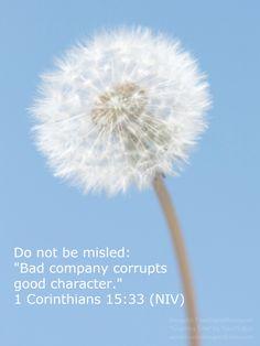 """1 Corinthians 15:33"""