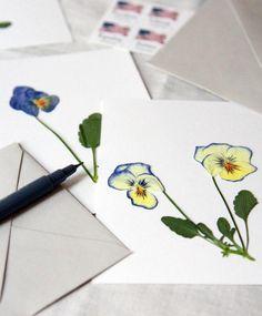 DIY: pressing violets to make botanical art