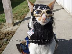 One of A Kind Biker Cat Costume... This website is the Pinterest of costumes