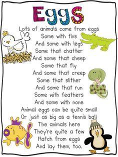 Eggs poem