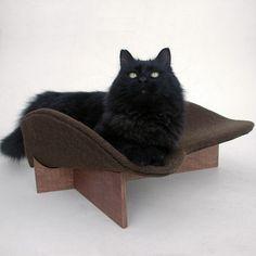 $79 Cat Bed #LikeKittysville #cat #catbed