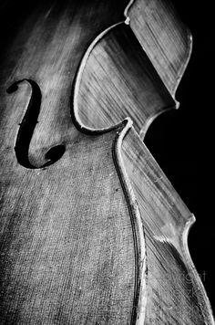 8 X 12 Black and White Fine Art Photography Print, Cello