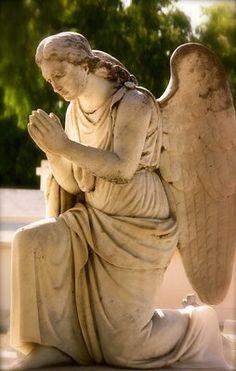 praying angel statue, clara mission, angels, mission cemeteri, angel statues, santa clara, pray angel