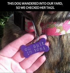 Best dog tag ever…