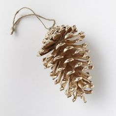 gilded pinecone | West Elm