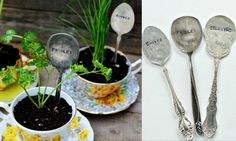 DIY Stamped Spoon Plant Markers