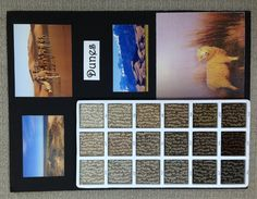 """Caress Collection carpeting in style """"Dunes"""" inspired by natural settings - by Shaw Floors"""
