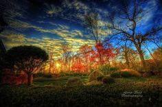 """""""Fairy Land I"""" by George Saad"""