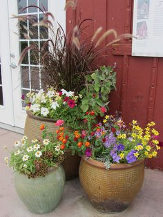 Container Gardens 2 by pathensch, via Flickr