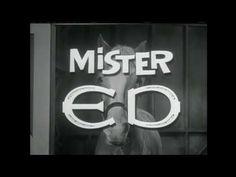 Mr. Ed Theme