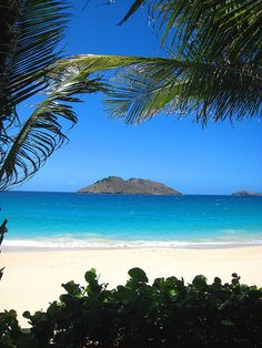 Place: The Caribbean. It's where I'm from.