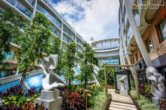Garden at Sea / oasis of the seas