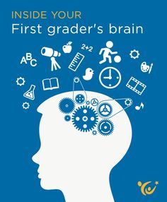 What insights can neuroscience offer parents about the mind of a first grader?