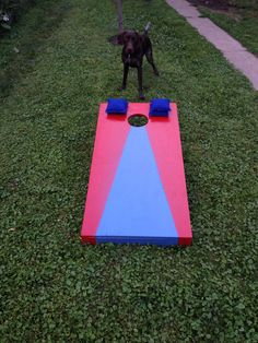 Cornhole is a classic backyard game, and very easy to make. This set I made in an afternoon. The official dimensions are 2 feet by 4 feet, so you could make two sets out of a 4x8 sheet of plywood. ...