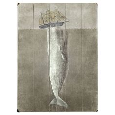 Moby Dick Wall Decor//
