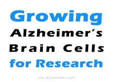 Growing Alzheimer's Brain Cells for Research
