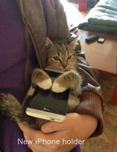 IPhone holder...