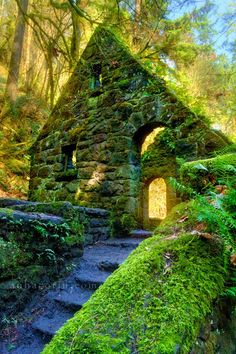 Ivy House, Portland, Oregon You can hike to this easily. ruin, forest, travel, ivy, stones, ivi hous, place, stone houses, portland oregon