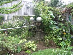 Garden mirror makes yard look bigger. I have mirror along much of my garden fence. The silver ball is a spray painted lamp globe, still on the lamp stand. At the top of the fence you might notice the disco ball which happened to fit perfectly into a wallmounted plant stand I found in the garbage. There's a few other garden junk nick nacks here and there if you look closely...