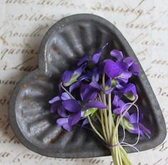 violets meaning love and faithfulness ...love the mold and love letter they sit on