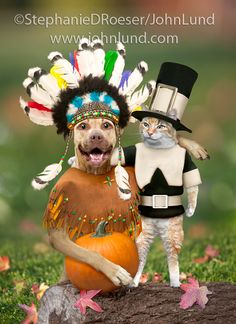 Funny pet picture of a cat dressed as a pilgrim with a dog dressed as an Indian for a Halloween Greeting Card.