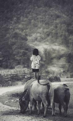 Vietnam - image:  David Terrazas