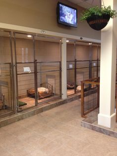 Dog and Large Animal Custom Enclosures - Mason Company Gallery. If I ever get my rescue up and running ( common lottery!) this is what it would look like for sure!